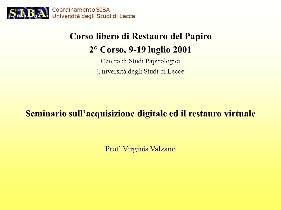 Corso libero di Restauro del Papiro 2° Corso, 9-19 luglio 2001 Centro di Studi Papirologici Università degli Studi di Lecce Seminario sullacquisizione