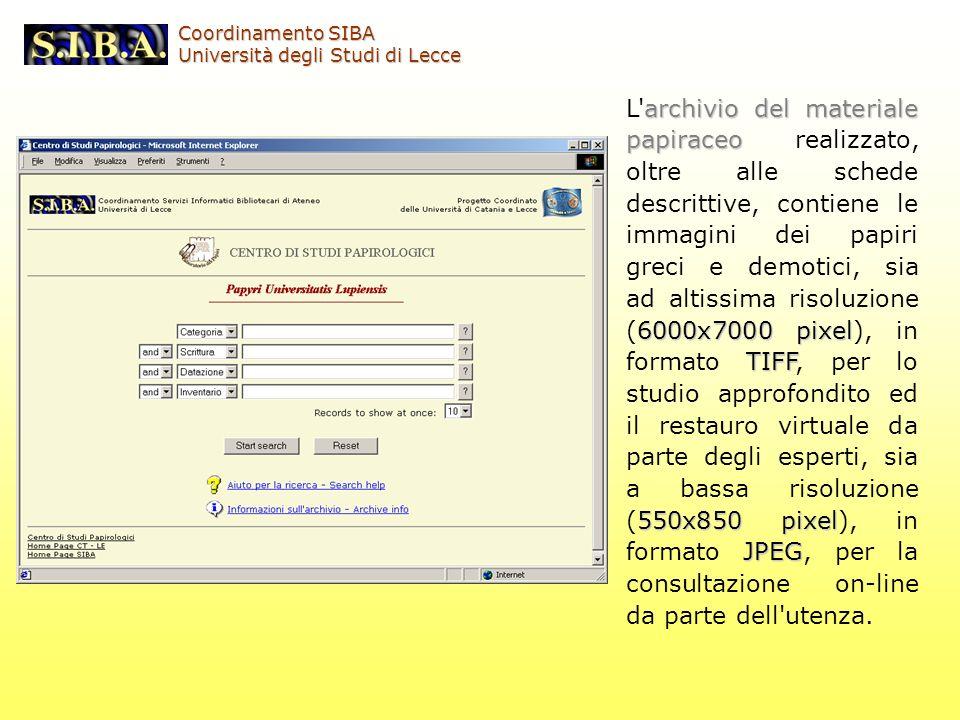 archivio del materiale papiraceo 6000x7000 pixel TIFF 550x850 pixel JPEG L'archivio del materiale papiraceo realizzato, oltre alle schede descrittive,