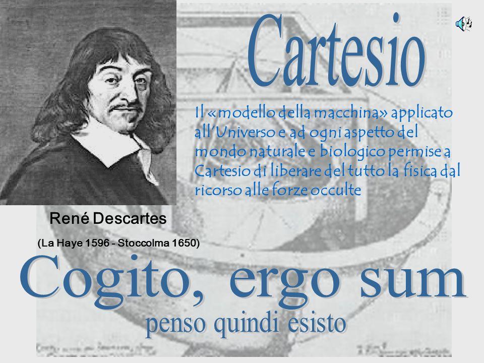 René Descartes Il «modello della macchina» applicato allUniverso e ad ogni aspetto del mondo naturale e biologico permise a Cartesio di liberare del t