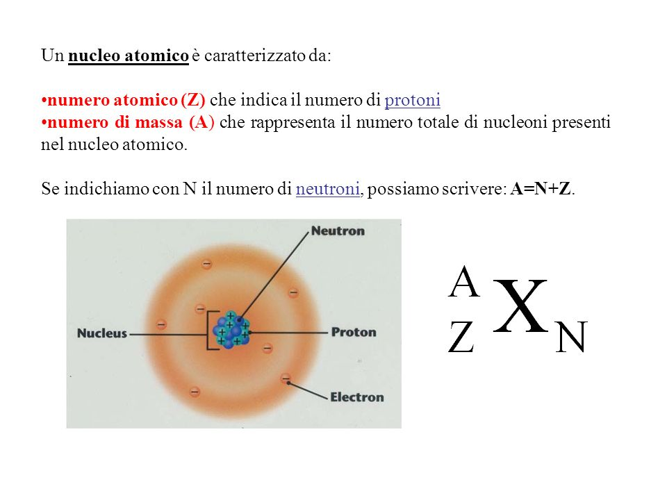 Un nucleo atomico è caratterizzato da: numero atomico (Z) che indica il numero di protoni numero di massa (A) che rappresenta il numero totale di nucl