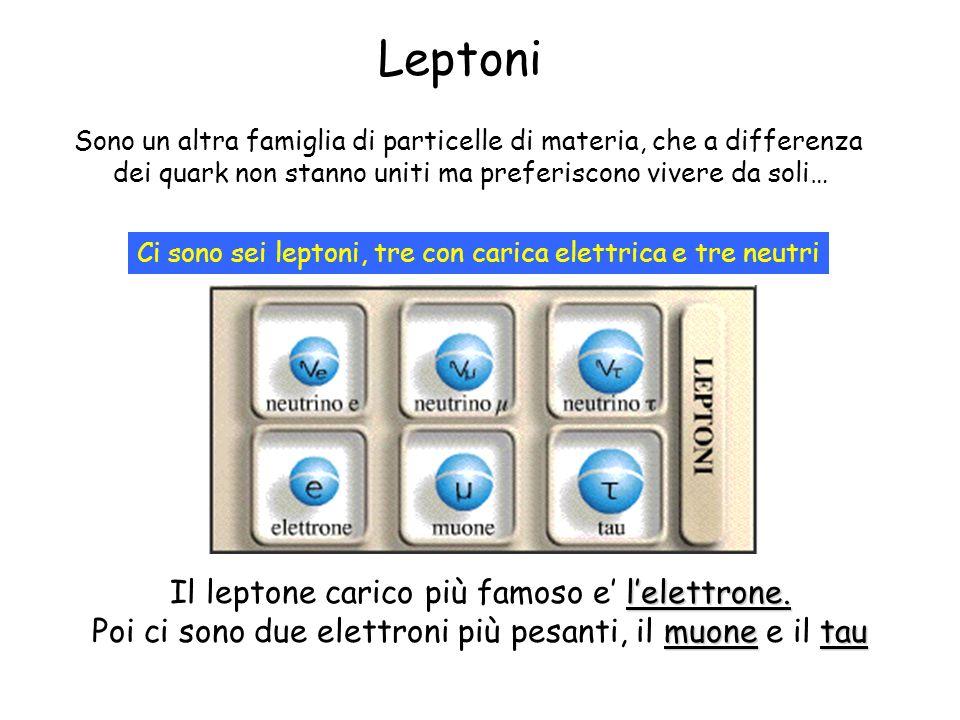 Leptoni Sono un altra famiglia di particelle di materia, che a differenza dei quark non stanno uniti ma preferiscono vivere da soli… Ci sono sei lepto