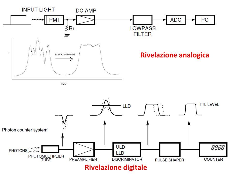 Rivelazione analogica Rivelazione digitale