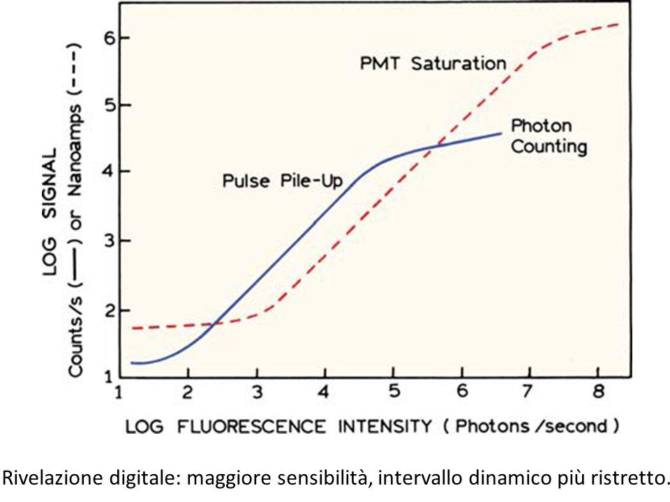 Rivelazione digitale: maggiore sensibilità, intervallo dinamico più ristretto.