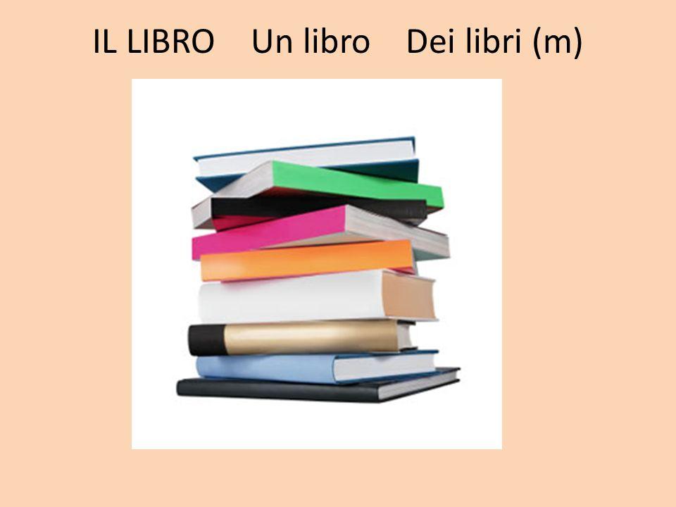 IL LIBRO Un libro Dei libri (m)