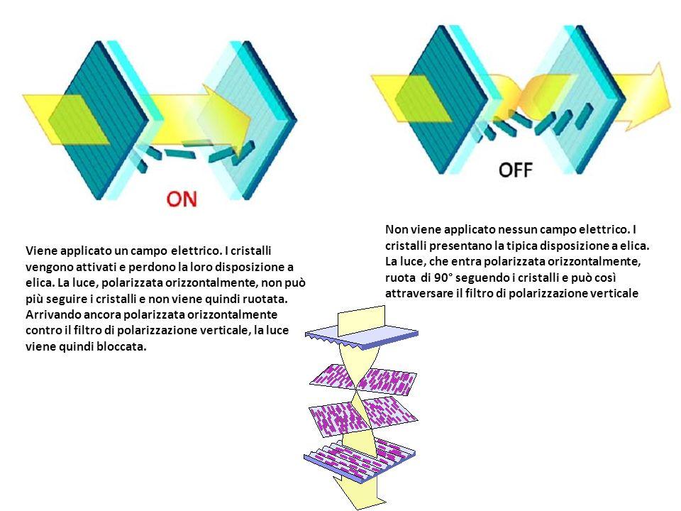Non viene applicato nessun campo elettrico. I cristalli presentano la tipica disposizione a elica. La luce, che entra polarizzata orizzontalmente, ruo