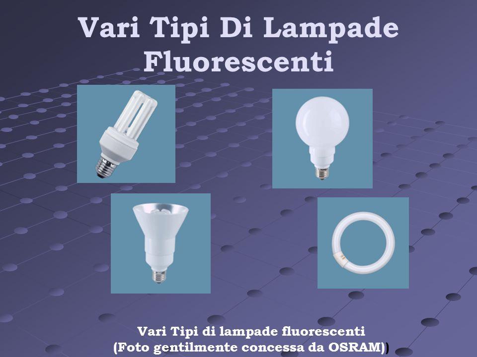 Vari Tipi Di Lampade Fluorescenti Vari Tipi di lampade fluorescenti (Foto gentilmente concessa da OSRAM))