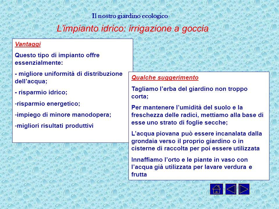 Il nostro giardino ecologico Limpianto idrico: irrigazione a goccia Vantaggi Questo tipo di impianto offre essenzialmente: - migliore uniformità di di