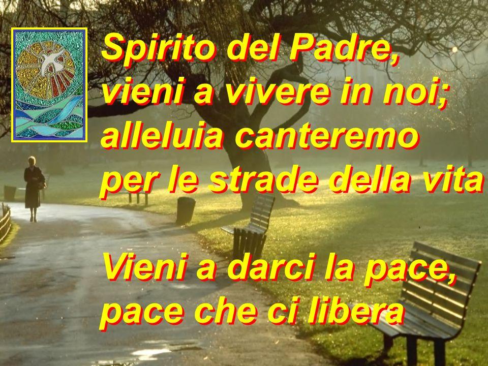 Spirito del Padre vieni a vivere in noi alleluia canteremo per le strade della vita vieni, Padre dei poveri vieni, luce splendida Spirito del Padre vi