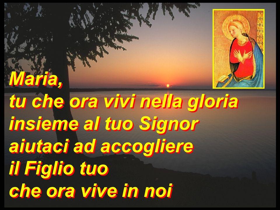 Maria, tu che hai atteso nel silenzio la sua parola per noi aiutaci ad accogliere il Figlio tuo che ora vive in noi Maria, tu che hai atteso nel silen