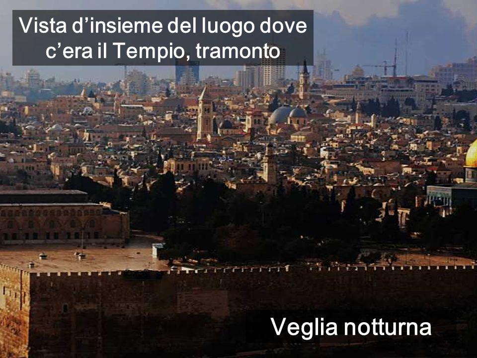 Vista dinsieme del luogo dove cera il Tempio, tramonto Veglia notturna