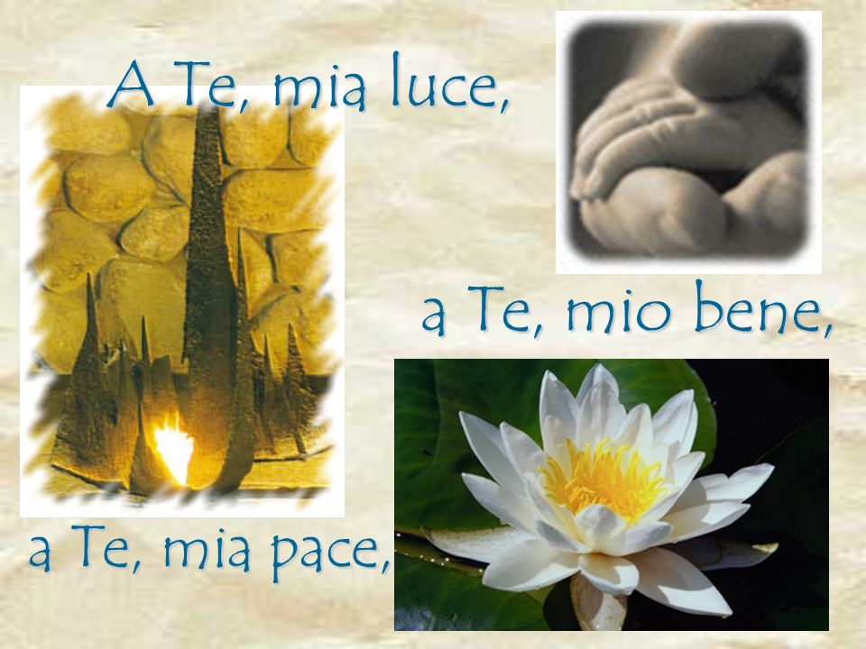a Te, mio bene, A Te, mia luce, a Te, mia pace,