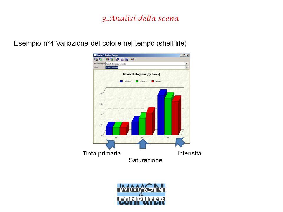 3.Analisi della scena Tinta primaria Esempio n°4 Variazione del colore nel tempo (shell-life) Saturazione Intensità