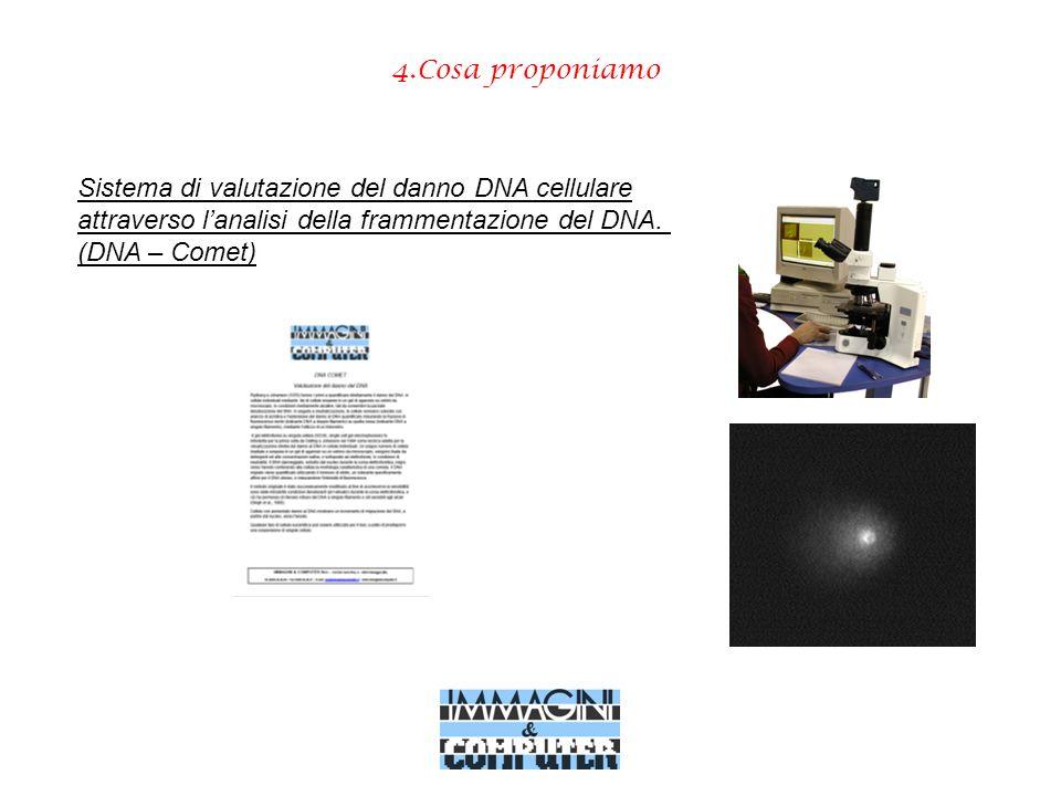 4.Cosa proponiamo Sistema di valutazione del danno DNA cellulare attraverso lanalisi della frammentazione del DNA. (DNA – Comet)