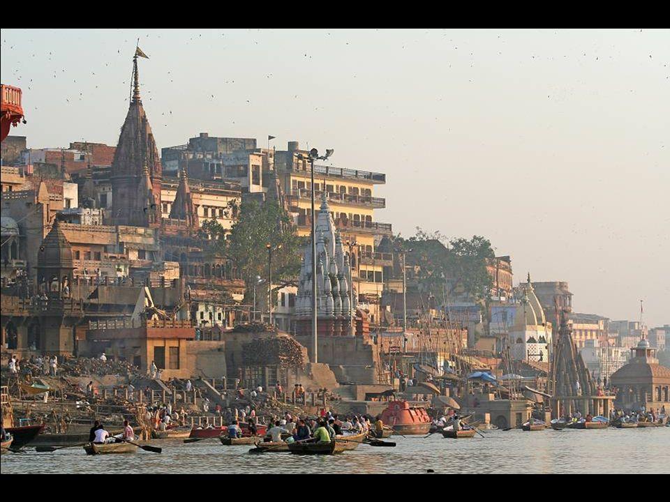 Un uomo che lava i bufali nel Gange