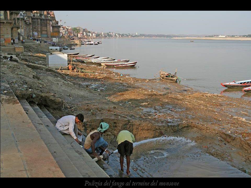 Caos nelle strade di Varanasi