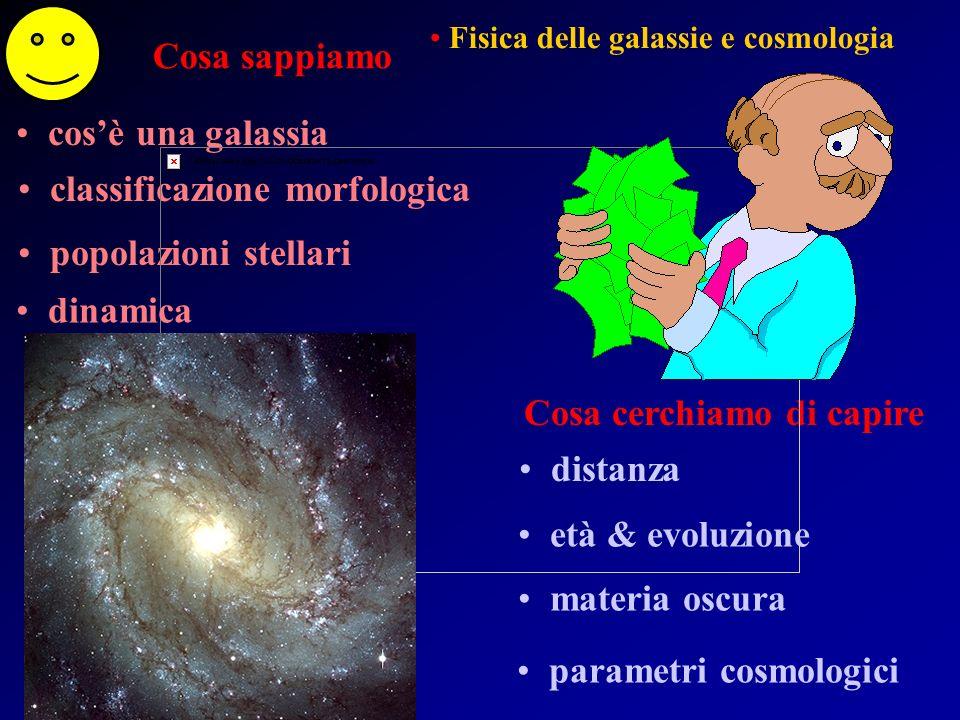 Cosa sappiamo Cosa cerchiamo di capire cosè una stella come nasce come evolve stelle di presequenza pulsar & buchi neri come muore binarie nane brune Fisica delle stelle e del mezzo interstellare