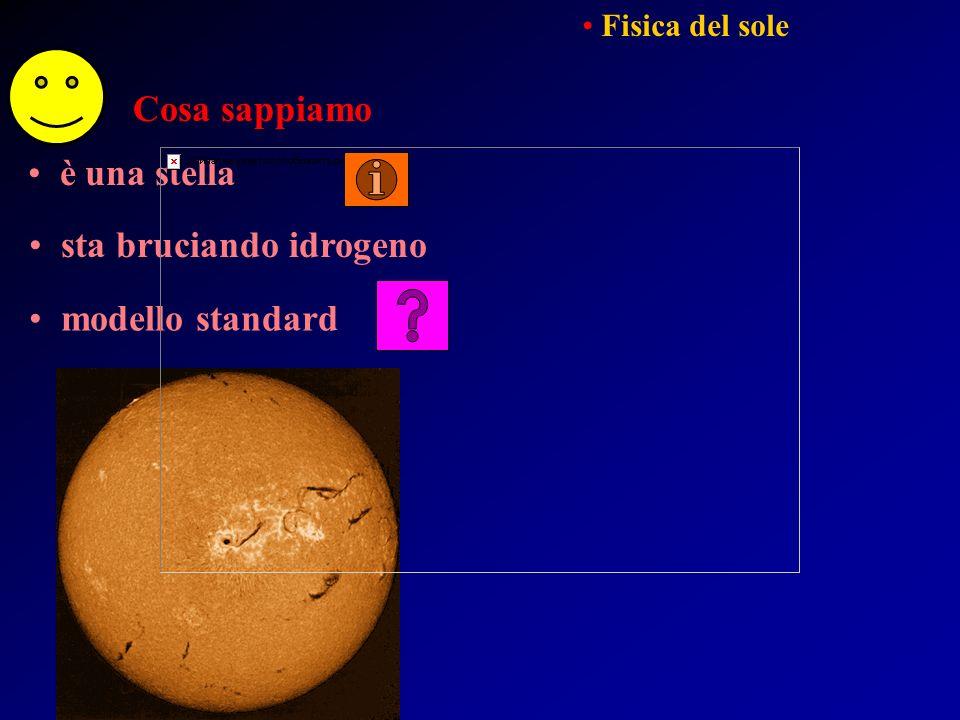 Cosa sappiamo è una stella sta bruciando idrogeno Fisica del sole