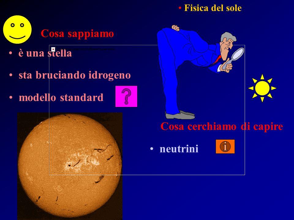 Cosa sappiamo è una stella sta bruciando idrogeno modello standard Fisica del sole