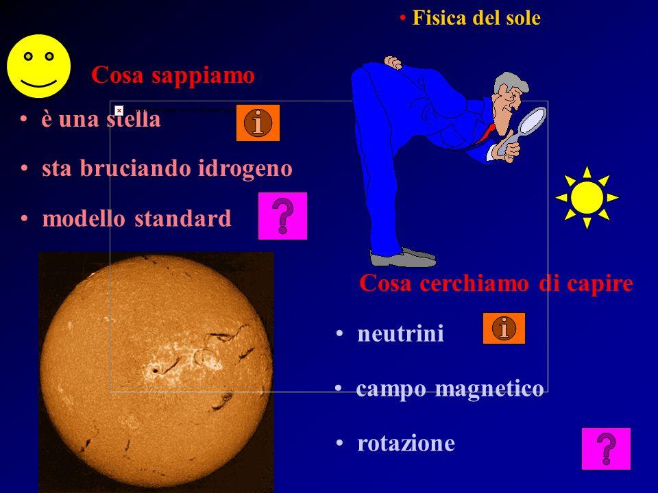 Cosa sappiamo Cosa cerchiamo di capire è una stella sta bruciando idrogeno modello standard campo magnetico rotazione neutrini Fisica del sole