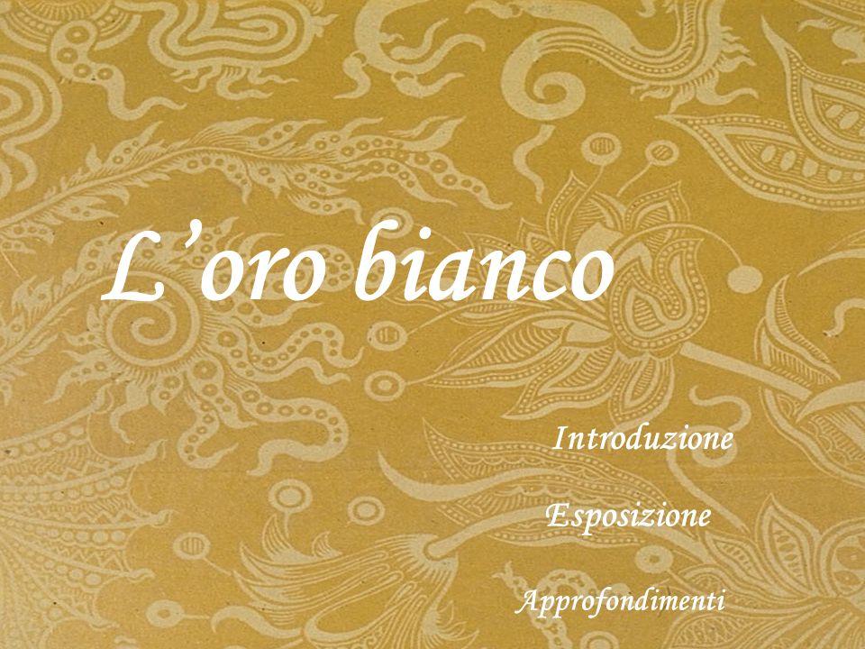 F u probabilmente Marco Polo a fare conoscere la porcellana in Europa e fu lui a usare il termine puorcelaine per primo, dal nome di una conchiglia orientale.