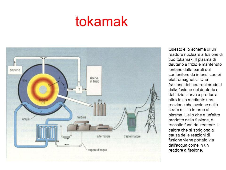 tokamak Questo è lo schema di un reattore nucleare a fusione di tipo tokamak. Il plasma di deuterio e trizio è mantenuto lontano dalle pareti del cont
