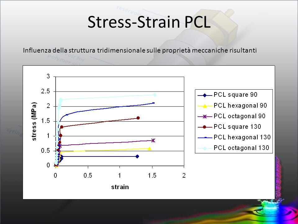 Stress-Strain PCL Influenza della struttura tridimensionale sulle proprietà meccaniche risultanti