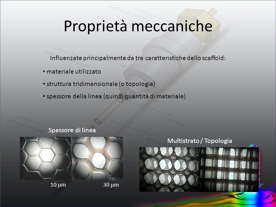 10 m30 m Multistrato / Topologia Proprietà meccaniche Influenzate principalmente da tre caratteristiche dello scaffold: materiale utilizzato struttura