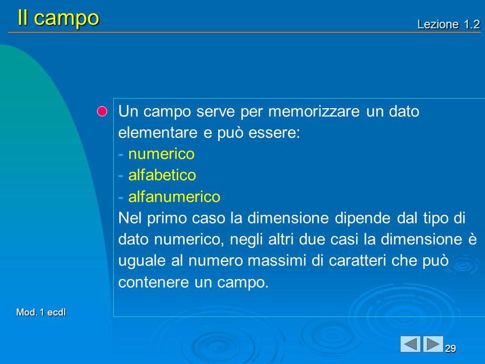 Lezione 1.2 Il campo 29 Un campo serve per memorizzare un dato elementare e può essere: - numerico - alfabetico - alfanumerico Nel primo caso la dimen