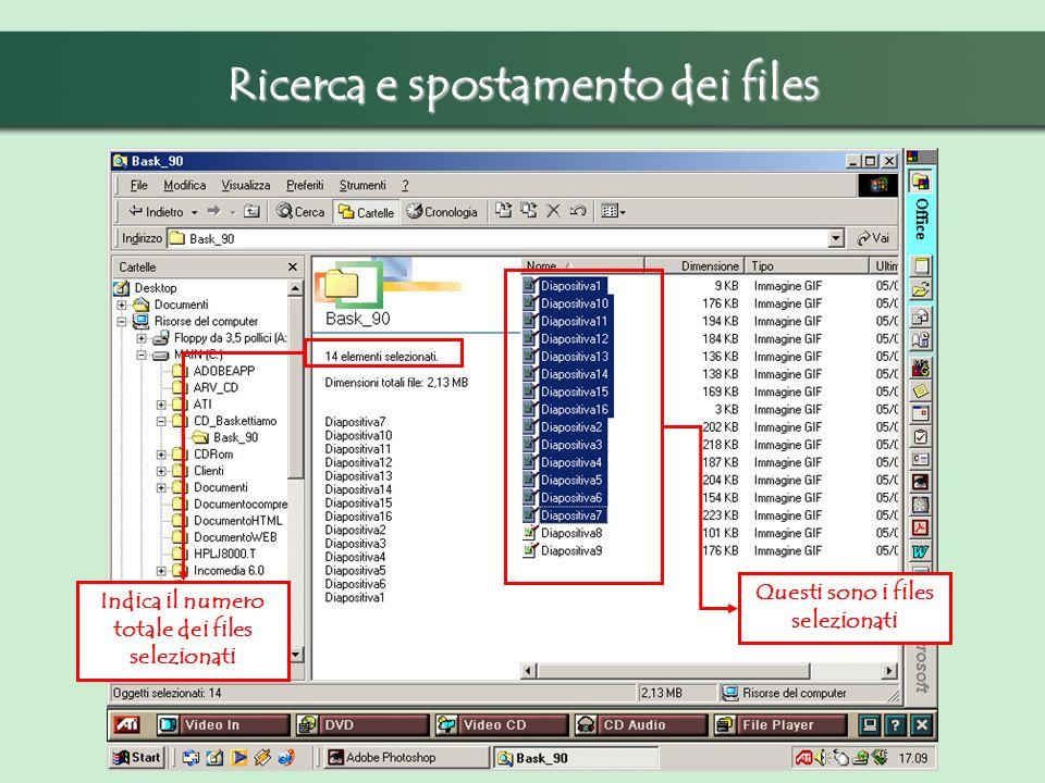 Ricerca e spostamento dei files Indica il numero totale dei files selezionati Questi sono i files selezionati