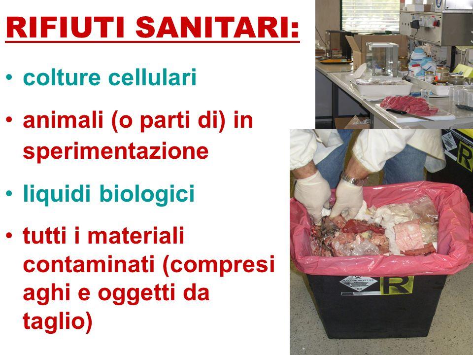 RIFIUTI SANITARI: colture cellulari animali (o parti di) in sperimentazione liquidi biologici tutti i materiali contaminati (compresi aghi e oggetti da taglio)
