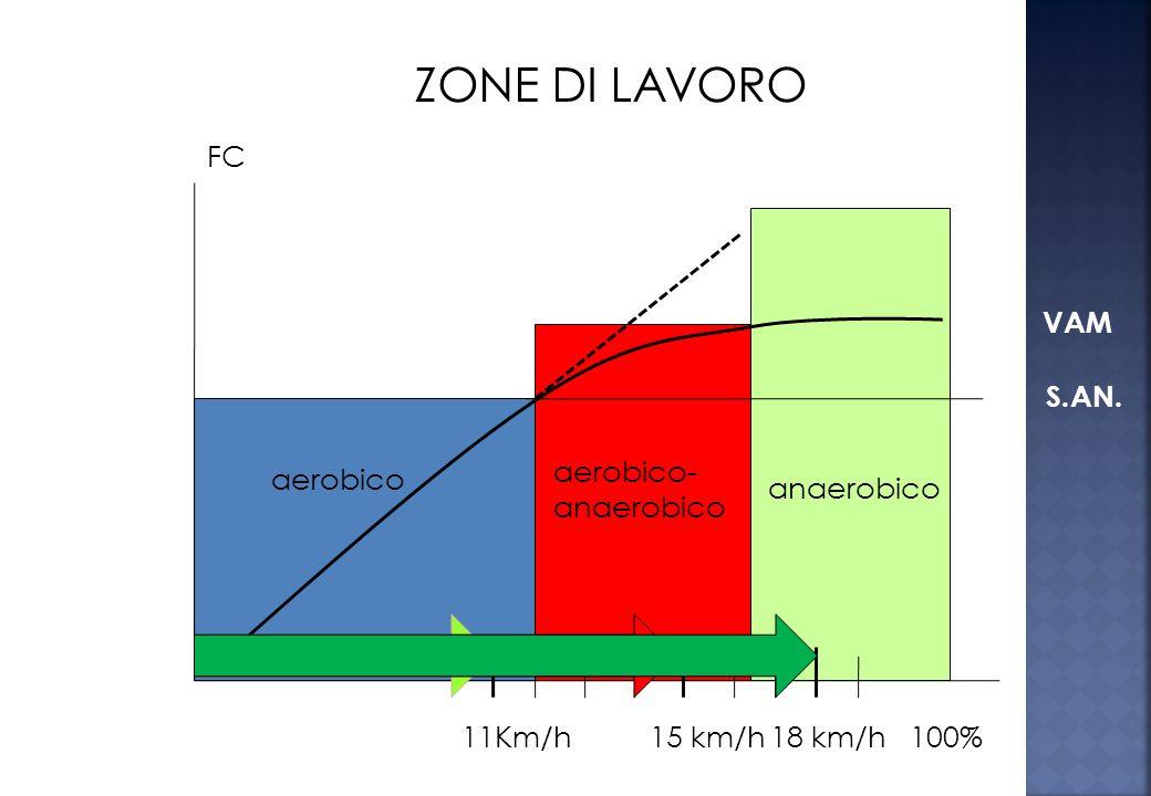 Ad intensità superiori alla VAM il sistema aerobico non è più in grado di garantire il fabbisogno di ossigeno, cosicché lenergia viene prodotta dal si