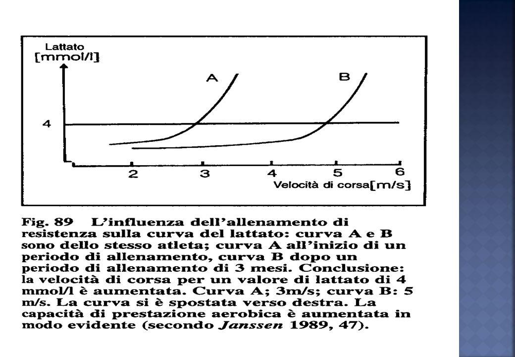 E rappresentata, per convenzione, dallintensità di esercizio al di sopra della quale la produzione di acido lattico ematico supera i quantitativi dell