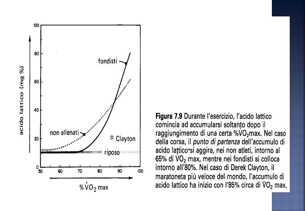 La soglia anaerobica si aggira tra l85 e il 90% del VO2 max (180-190) p/min La soglia anaerobica si aggira tra il 65 e l70% del VO2 max (140-150) p/mi