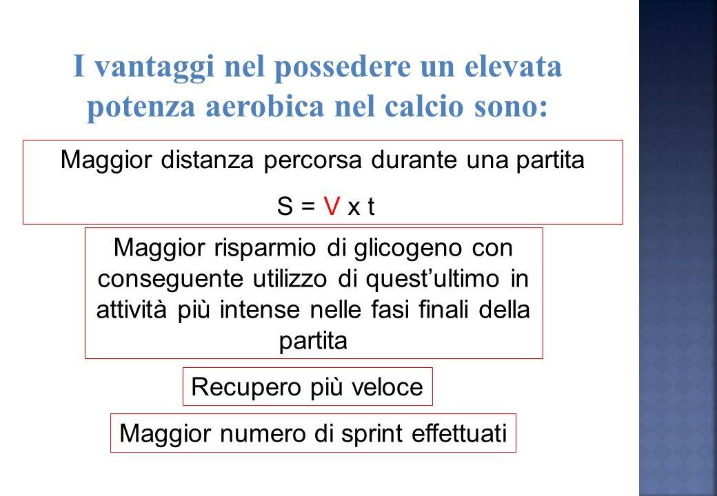 VO 2 max Soglia anaerobica