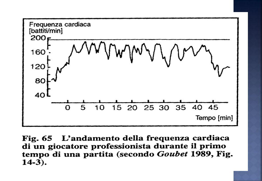 1,0 1,6 0202 LA CP via diretta per produzione energia glicogeno Sistemi di ricostruzione dellATP via indiretta per DEBITO DI OSSIGENO