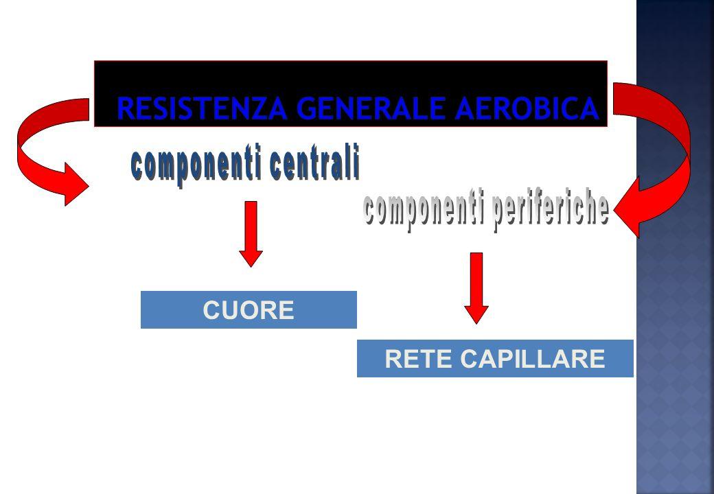 RESISTENZA GENERALE (di base): Rendimento del sistema cardio- respiratorio. Aspecifica, adatta a fornire le basi aerobiche per tutti gli sport. RESIST