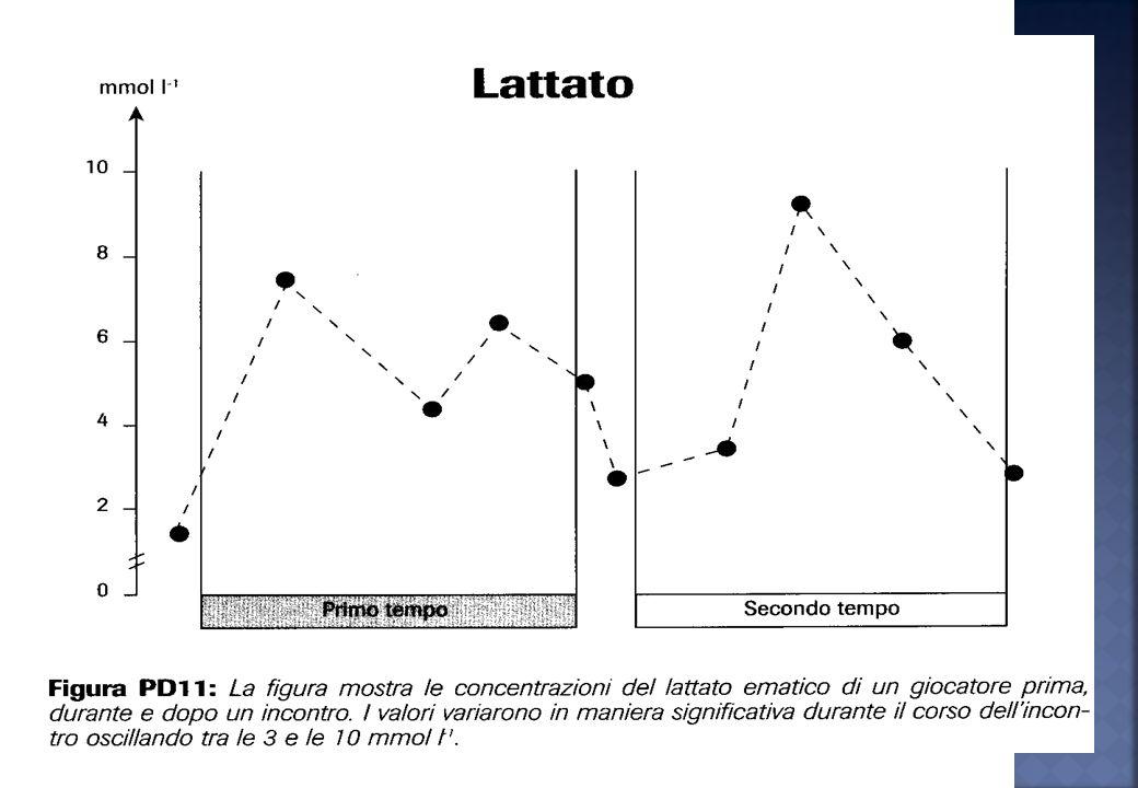 Lallenamento di resistenza alla velocità provoca un elevata concentrazione di lattato nel sangue, anche superiore a quello di una partita, ciò può cau