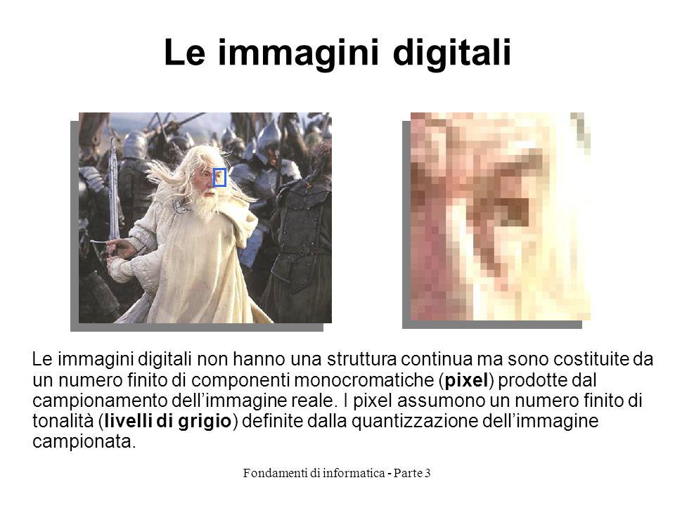 Fondamenti di informatica - Parte 3 Le immagini digitali Le immagini digitali non hanno una struttura continua ma sono costituite da un numero finito di componenti monocromatiche (pixel) prodotte dal campionamento dellimmagine reale.