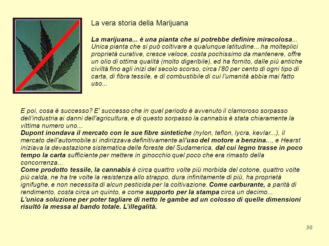 30 La vera storia della Marijuana La marijuana... è una pianta che si potrebbe definire miracolosa... Unica pianta che si può coltivare a qualunque la