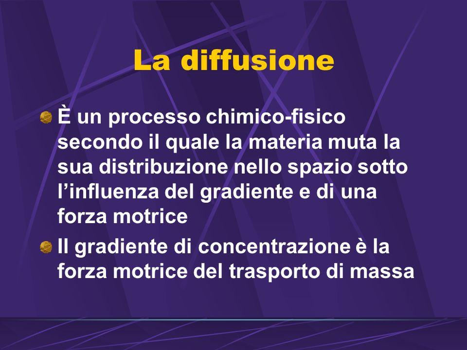 La diffusione È un processo chimico-fisico secondo il quale la materia muta la sua distribuzione nello spazio sotto linfluenza del gradiente e di una forza motrice Il gradiente di concentrazione è la forza motrice del trasporto di massa