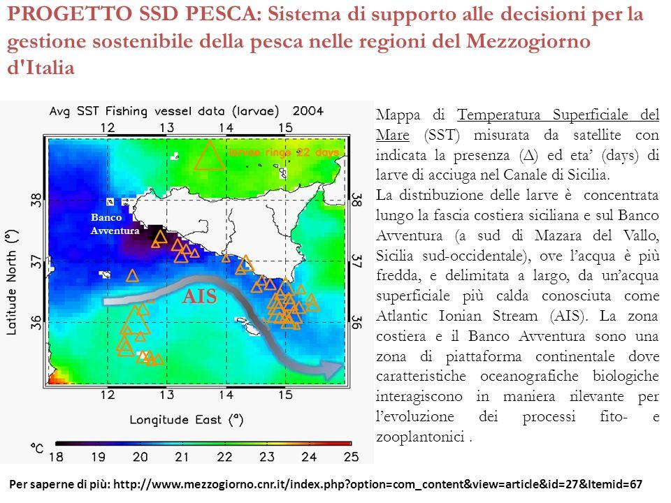 PROGETTO SSD PESCA: Sistema di supporto alle decisioni per la gestione sostenibile della pesca nelle regioni del Mezzogiorno d'Italia AIS Banco Avvent