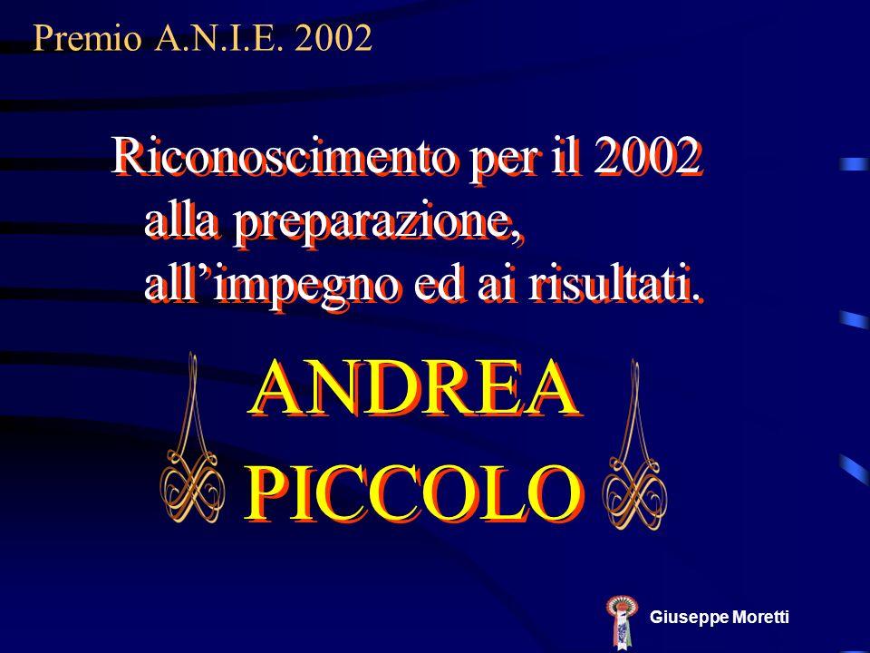 ANDREA PICCOLO ANDREA PICCOLO Premio A.N.I.E. 2002 Giuseppe Moretti Riconoscimento per il 2002 alla preparazione, allimpegno ed ai risultati.
