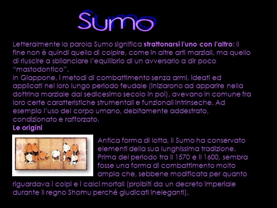 Letteralmente la parola Sumo significa strattonarsi l'uno con l'altro : il fine non è quindi quello di colpire, come in altre arti marziali, ma quello