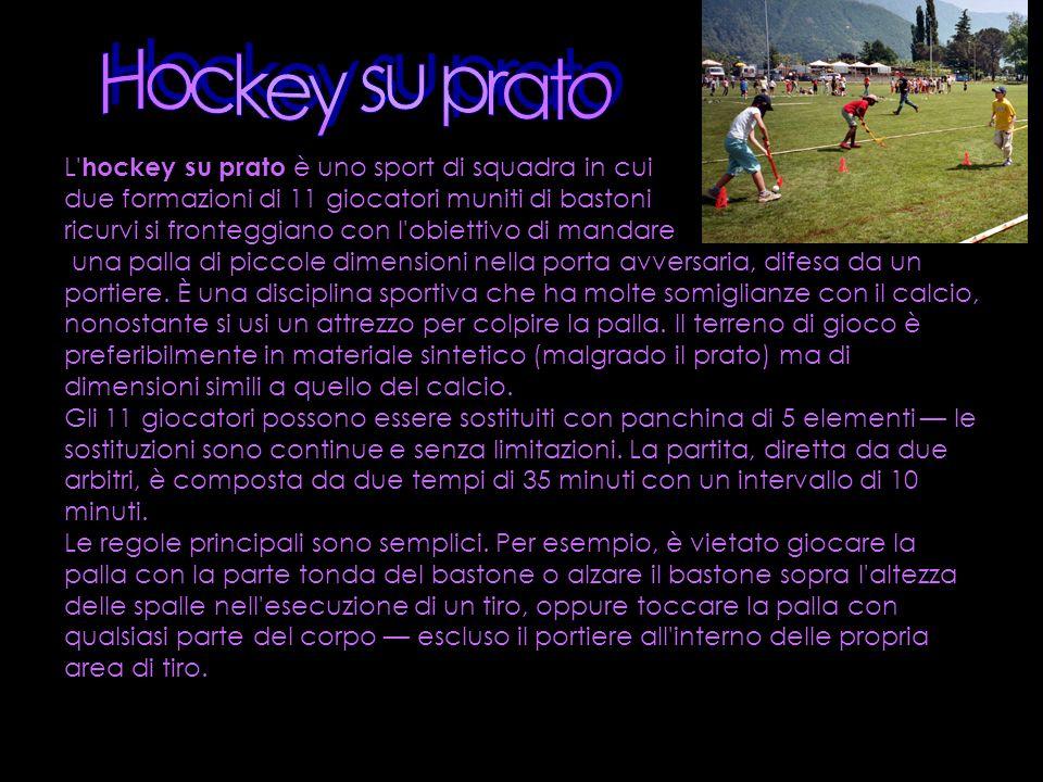 L' hockey su prato è uno sport di squadra in cui due formazioni di 11 giocatori muniti di bastoni ricurvi si fronteggiano con l'obiettivo di mandare u