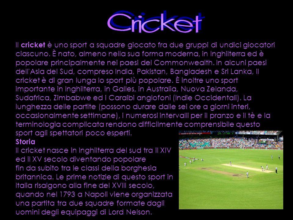 Il cricket è uno sport a squadre giocato fra due gruppi di undici giocatori ciascuno. È nato, almeno nella sua forma moderna, in Inghilterra ed è popo