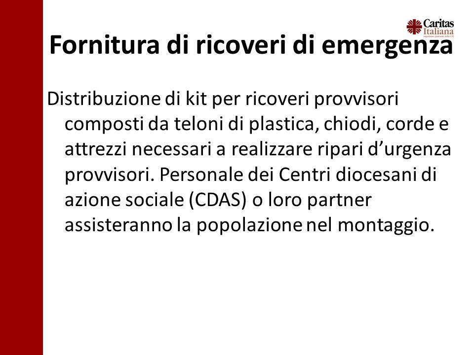 Fornitura di ricoveri di emergenza Distribuzione di kit per ricoveri provvisori composti da teloni di plastica, chiodi, corde e attrezzi necessari a realizzare ripari durgenza provvisori.