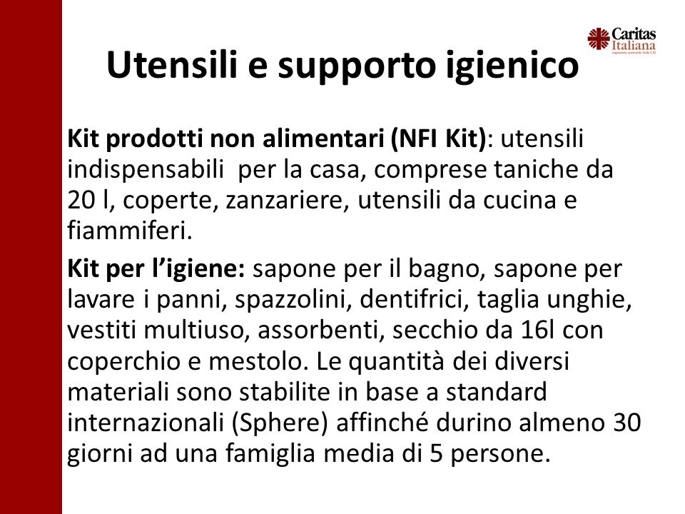 Utensili e supporto igienico Kit prodotti non alimentari (NFI Kit): utensili indispensabili per la casa, comprese taniche da 20 l, coperte, zanzariere, utensili da cucina e fiammiferi.