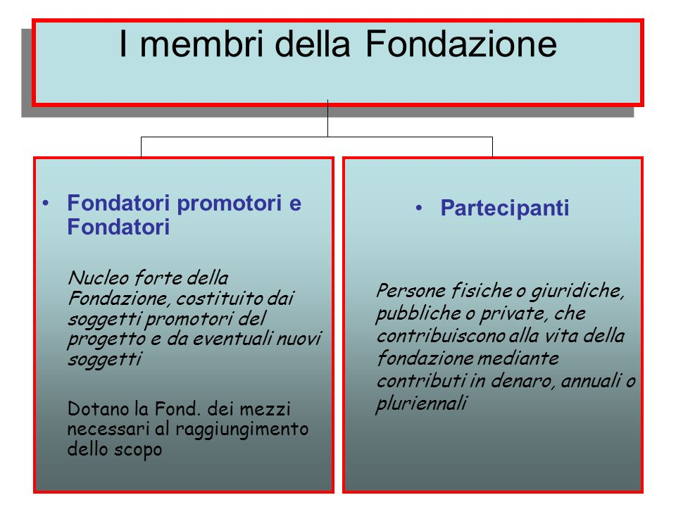 I membri della Fondazione Fondatori promotori e Fondatori Nucleo forte della Fondazione, costituito dai soggetti promotori del progetto e da eventuali