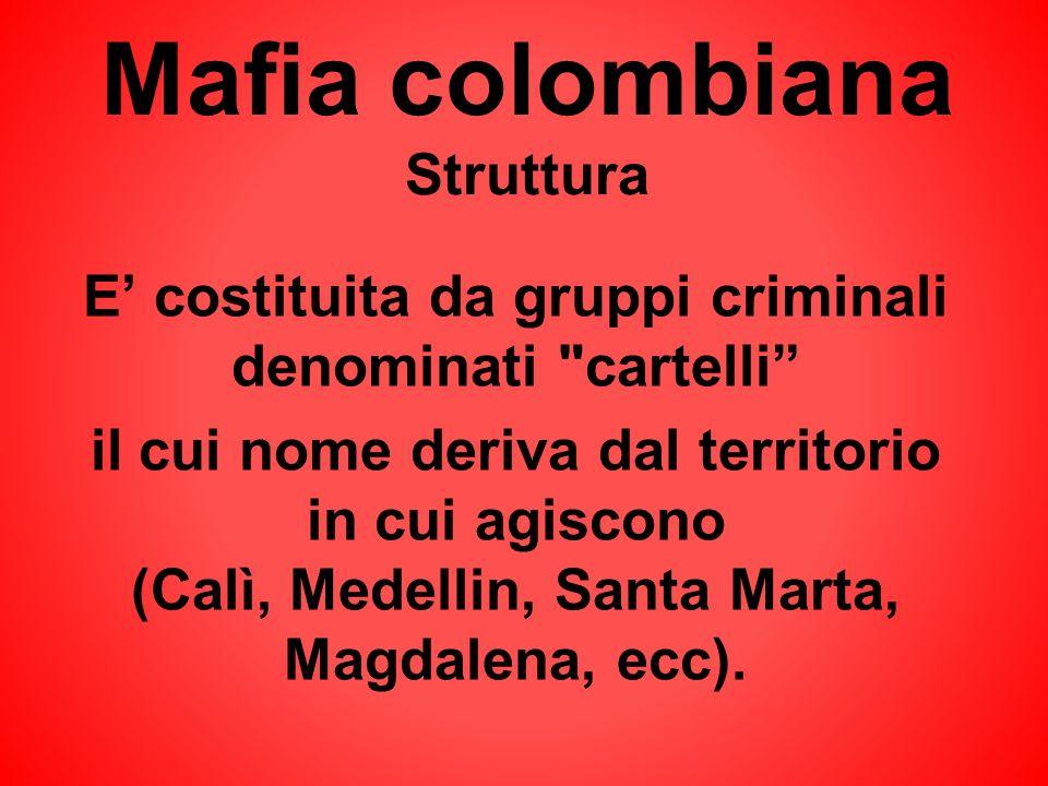 Mafia colombiana Struttura E costituita da gruppi criminali denominati