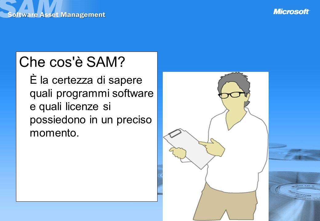 Che cos è SAM.